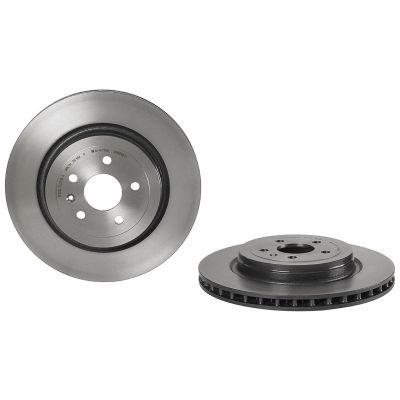 Model S - Rear brake disc Blue Print
