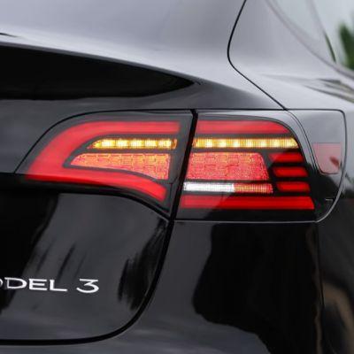 Model 3/Y - Fishbone Style Tail Light set (DEMO SET)